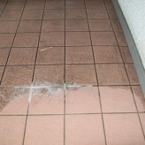 Grout Cleaning – Routine Cleaning – Residential
