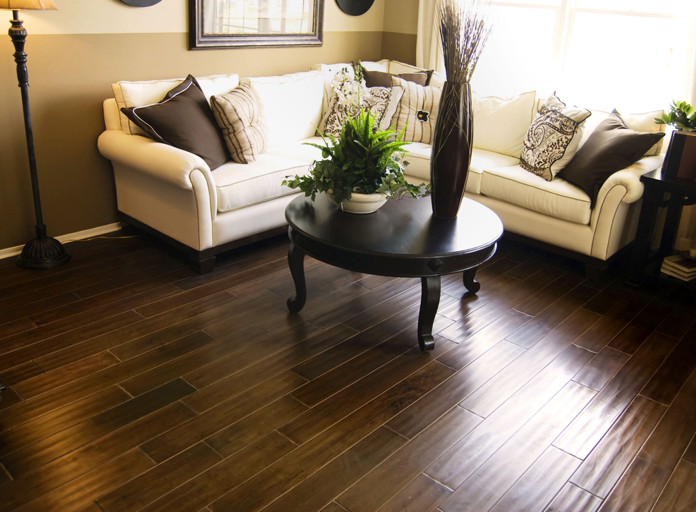 living room cleaned using the best vacuum for hardwood floors