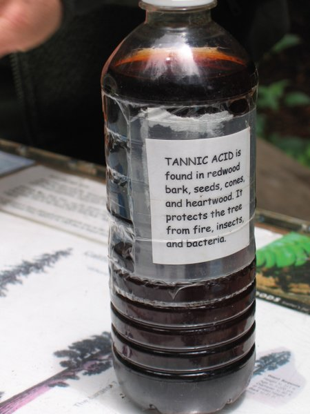 a bottle of tannic acid